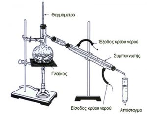 tsikoydia-4